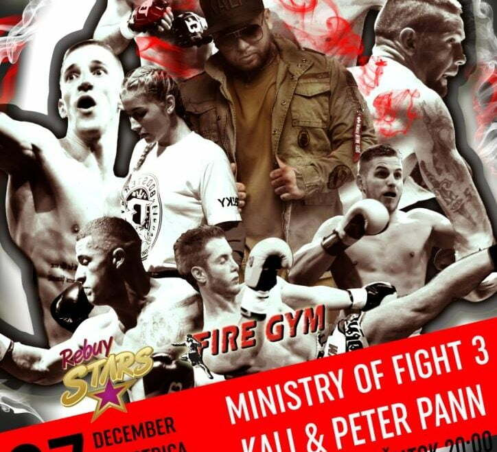 Ministry Of Fight 3